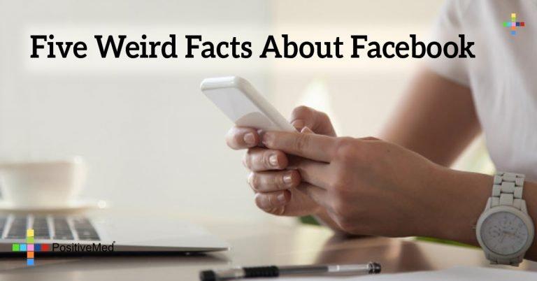 Five Weird Facts About Facebook