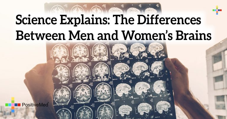 Science Explains: The Differences Between Men and Women's Brains