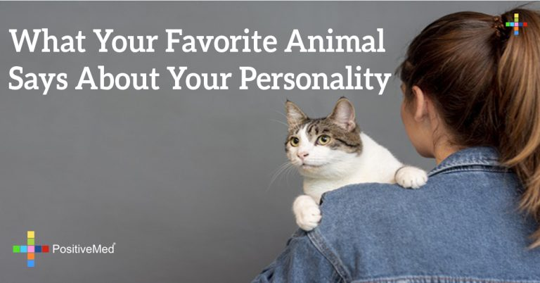 What Your Favorite Animal Says About Your Personality