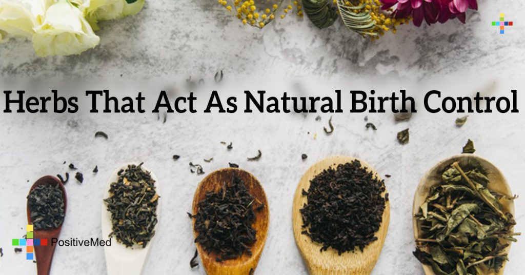 Herbs That Act As Natural Birth Control