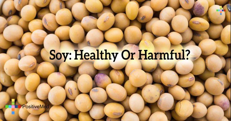 Soy: Healthy Or Harmful?