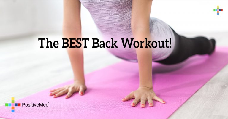 The BEST Back Workout!