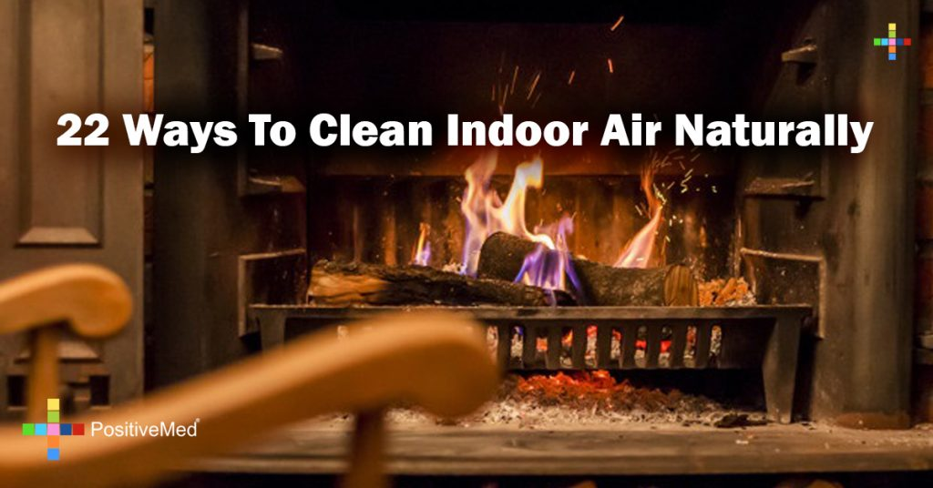 22 Ways To Clean Indoor Air Naturally