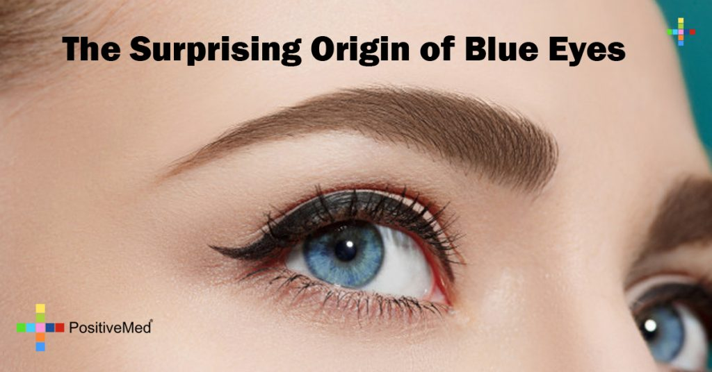 The Surprising Origin of Blue Eyes