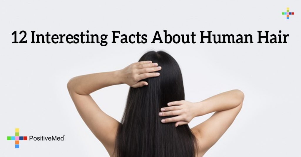 12 Interesting Facts About Human Hair