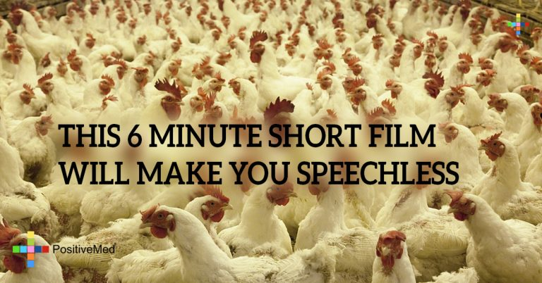 THIS 6 MINUTE SHORT FILM WILL MAKE YOU SPEECHLESS