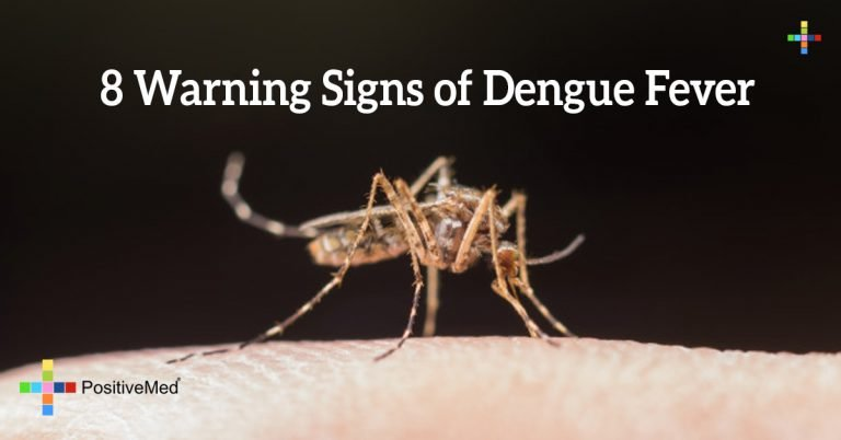 8 Warning Signs of Dengue Fever