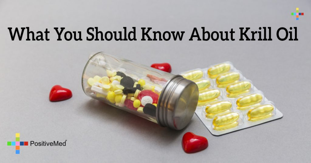 What You Should Know About Krill Oil