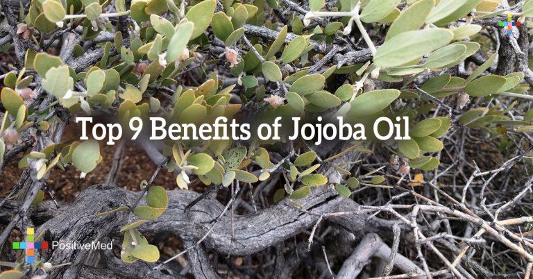 Top 9 Benefits of Jojoba Oil