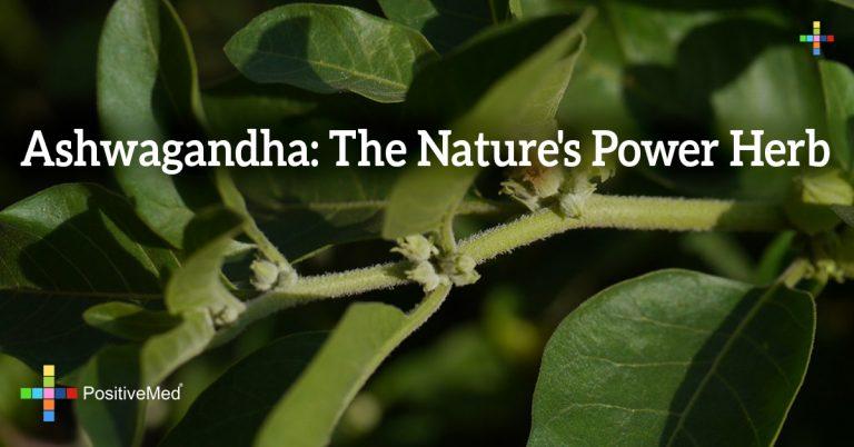 Ashwagandha: The Nature's Power Herb