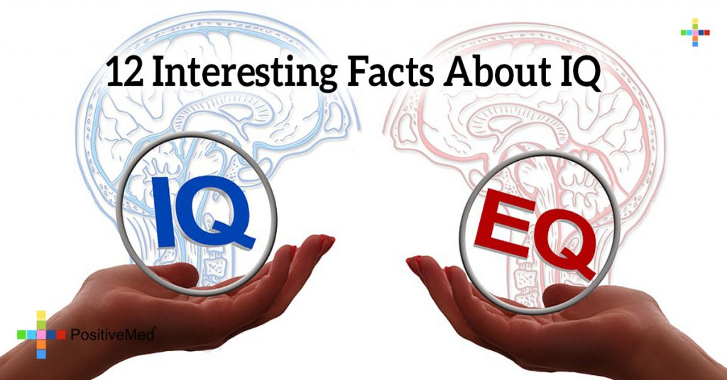 12 Interesting Facts About IQ