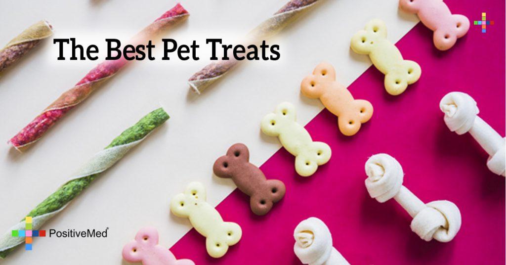 The Best Pet Treats