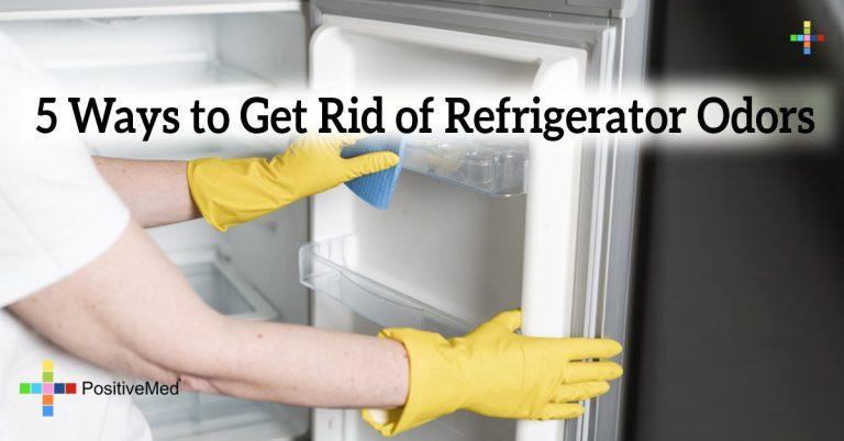 5 Ways to Get Rid of Refrigerator Odors