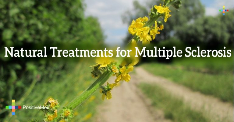 Natural Treatments for Multiple Sclerosis