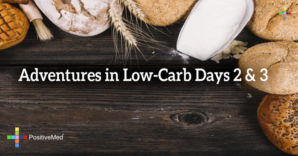 Adventures in Low-Carb Days 2 & 3