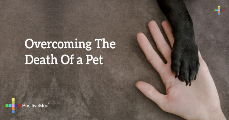 Overcoming the Death of a Pet