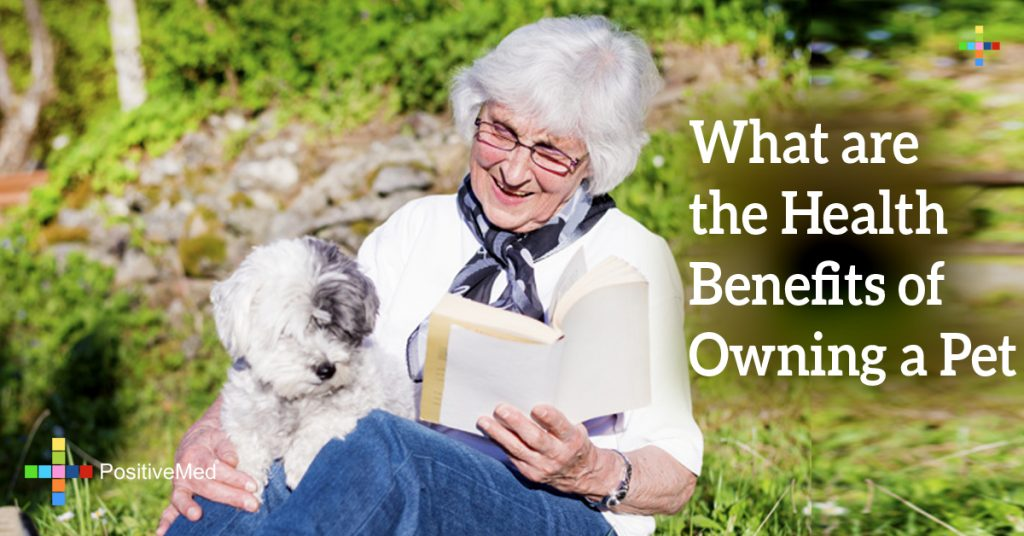 What are the Health Benefits of Owning a Pet