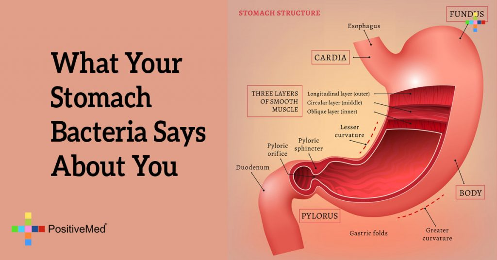 What Your Stomach Bacteria Says About You