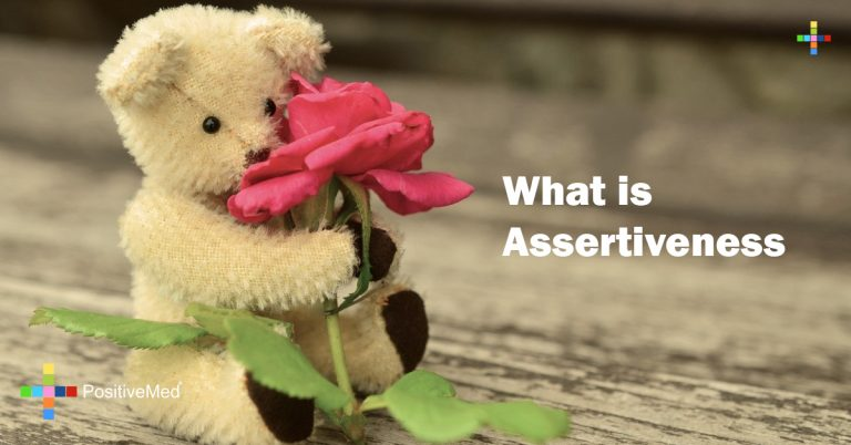 What is Assertiveness
