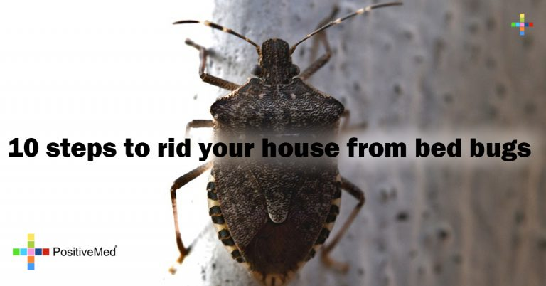 10 steps to rid your house from bed bugs