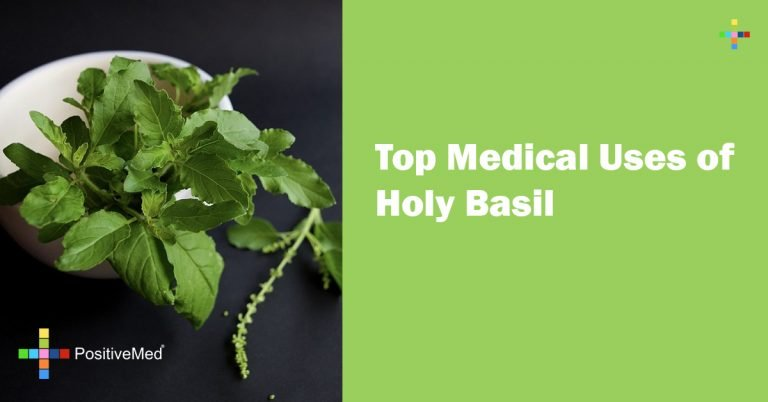 Top Medical Uses of Holy Basil