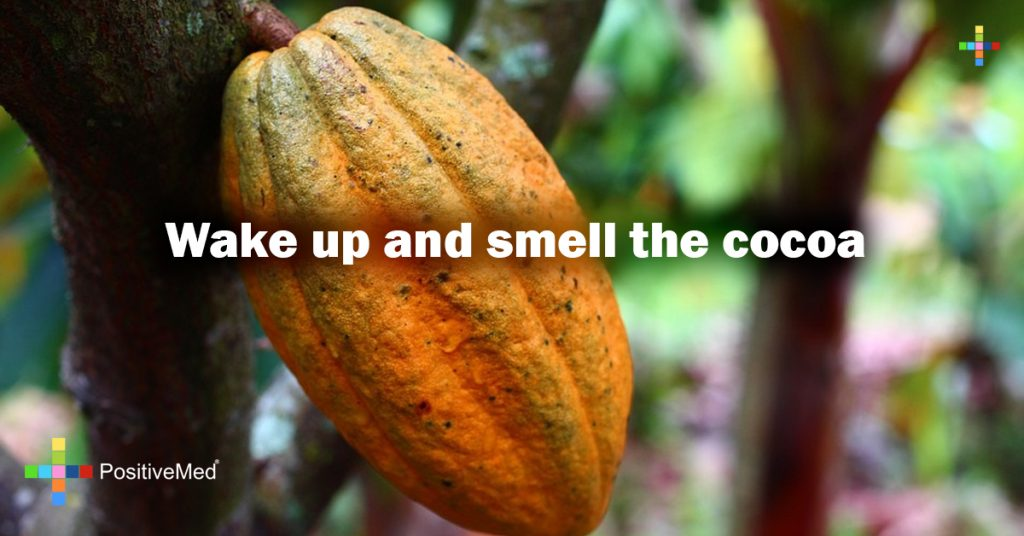 Wake up and smell the cocoa