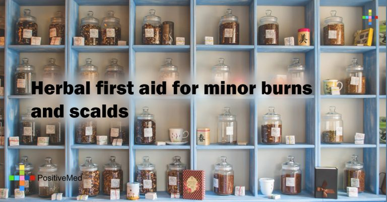 Herbal first aid for minor burns and scalds