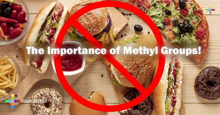The Importance of Methyl Groups!