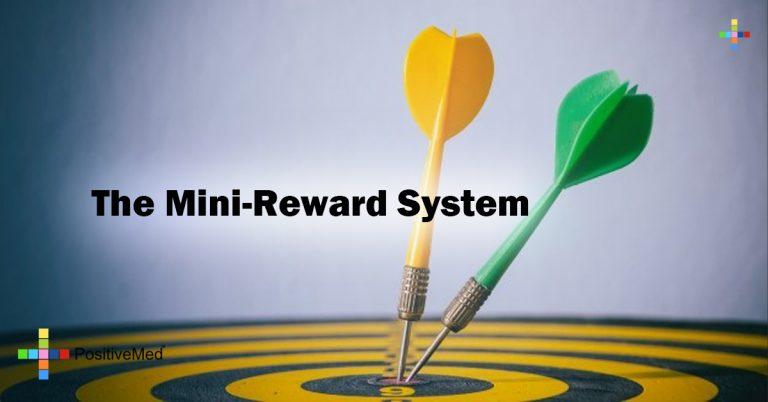 The Mini-Reward System