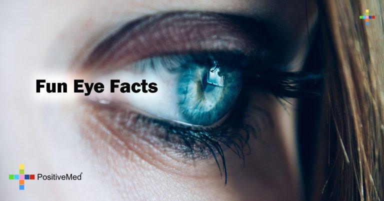 Fun Eye Facts