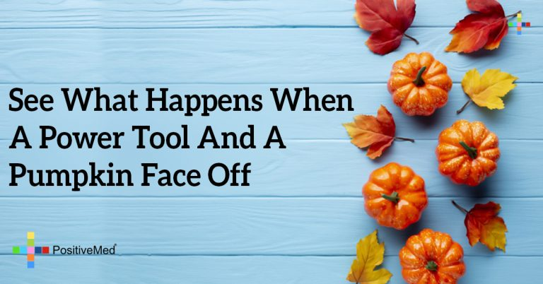 See What Happens When A Power Tool And A Pumpkin Face Off