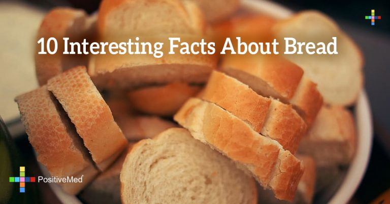 10 Interesting Facts about Bread