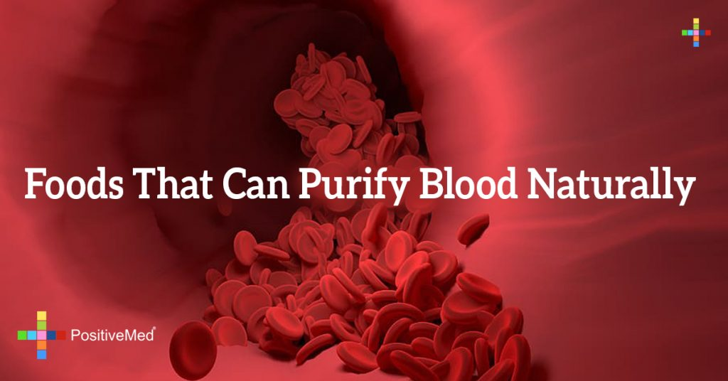 Foods that Can Purify Blood Naturally