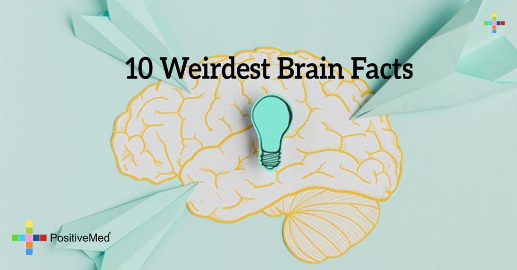 10 Weirdest Brain Facts