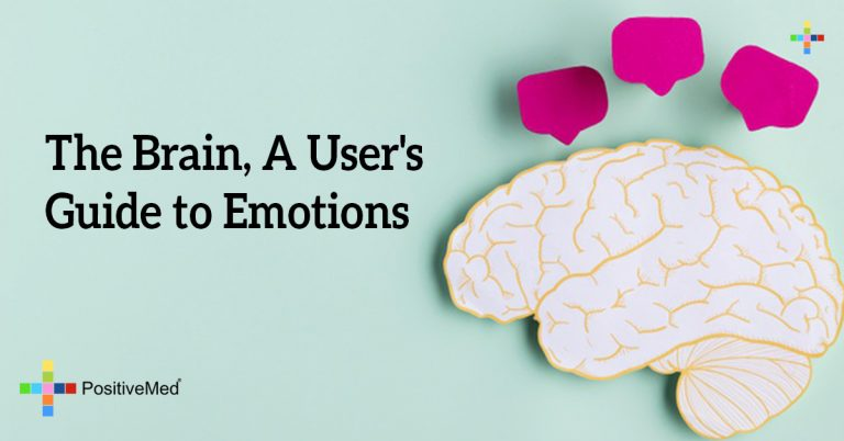 The Brain, A User's Guide to Emotions