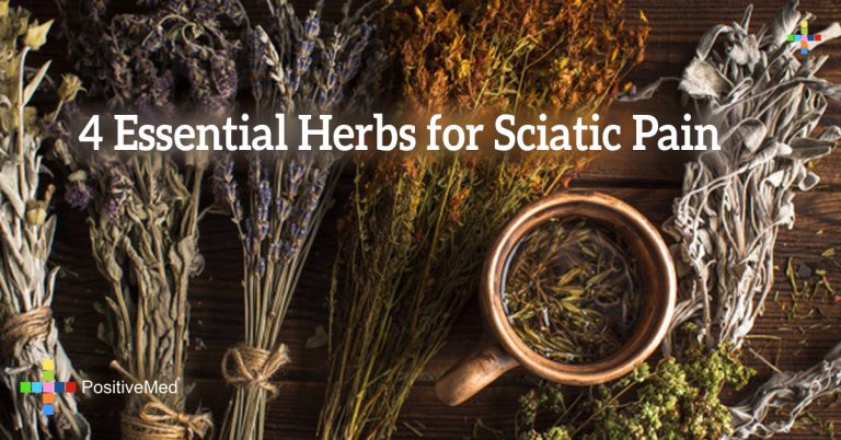 4 Essential Herbs for Sciatic Pain