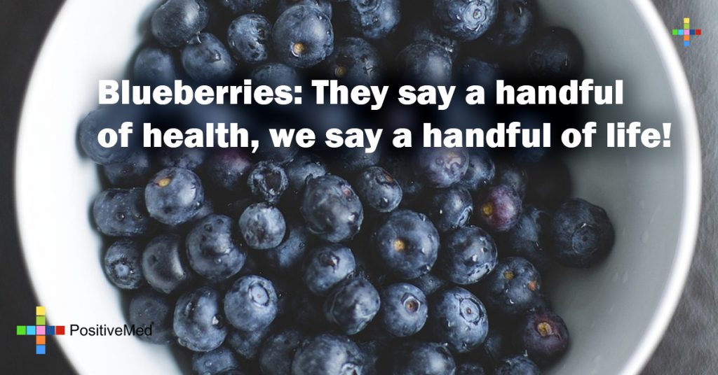Blueberries: They say a handful of health, we say a handful of life!