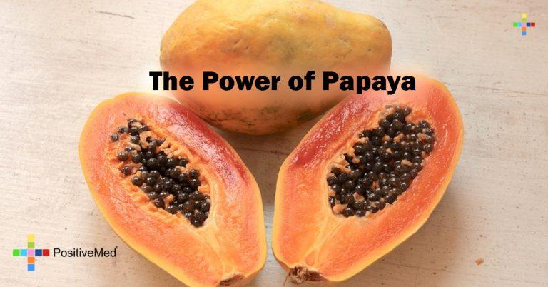 The Power of Papaya