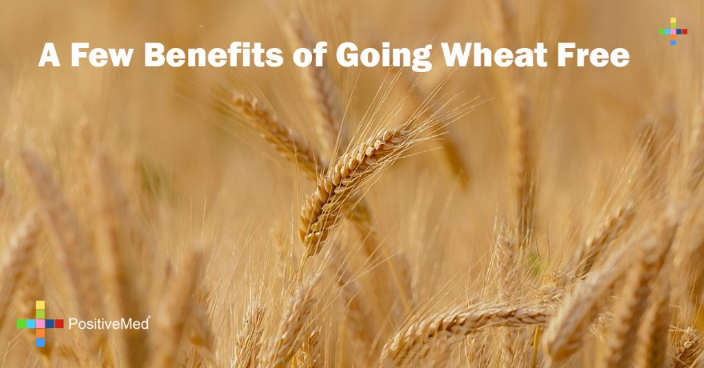A Few Benefits of Going Wheat Free