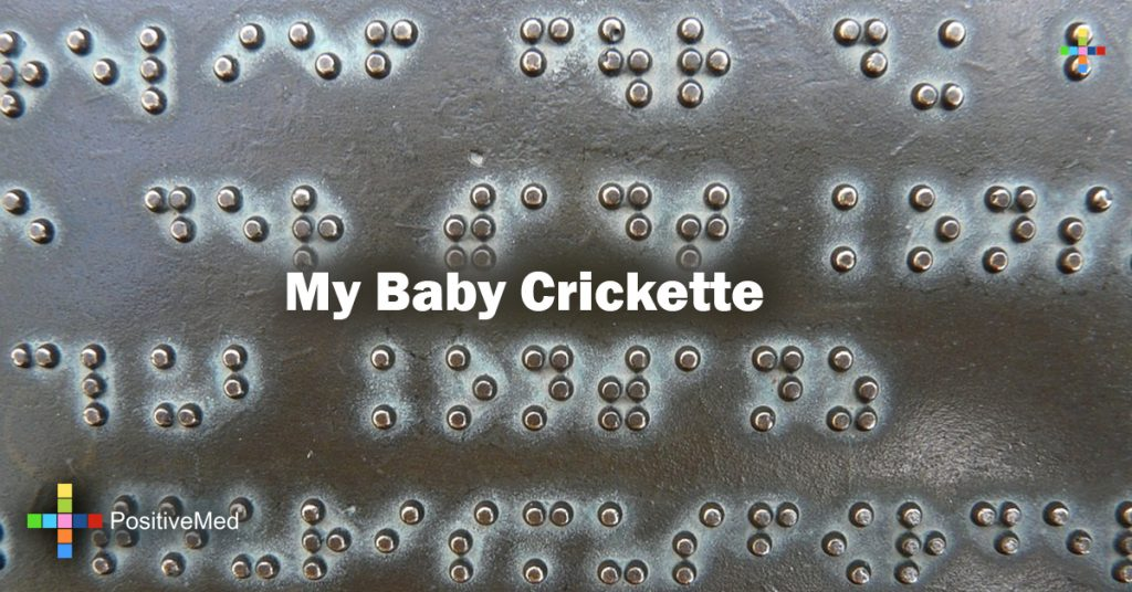 My Baby Crickette