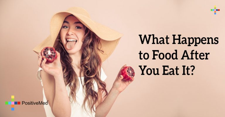 What Happens to Food After You Eat It?