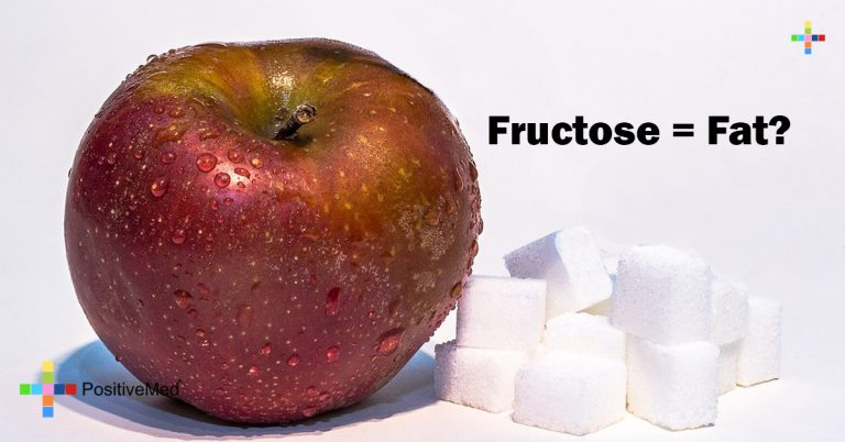 Fructose = Fat?
