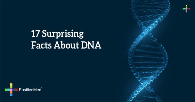 17 Surprising Facts About DNA