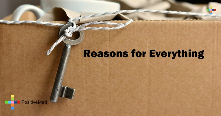 Reasons for Everything