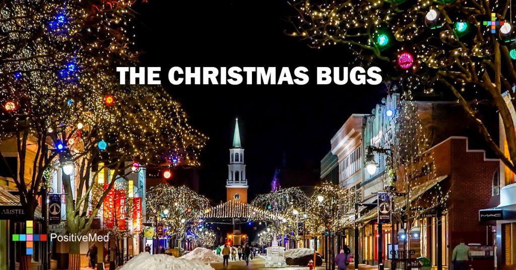 THE CHRISTMAS BUGS