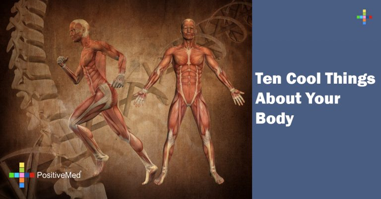 Ten Cool Things About Your Body