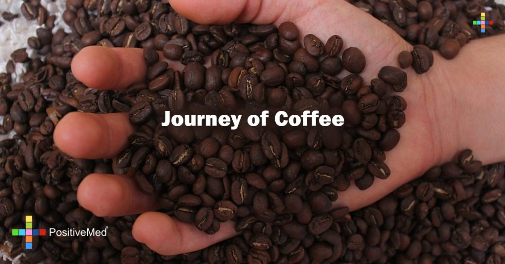 Journey of Coffee
