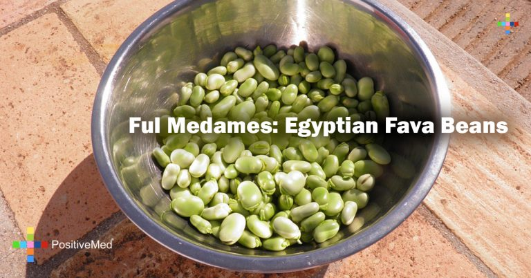 Ful Medames: Egyptian Fava Beans
