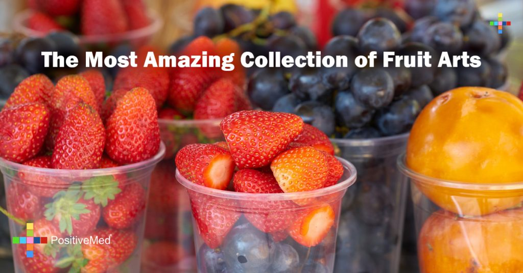 The Most Amazing Collection of Fruit Arts