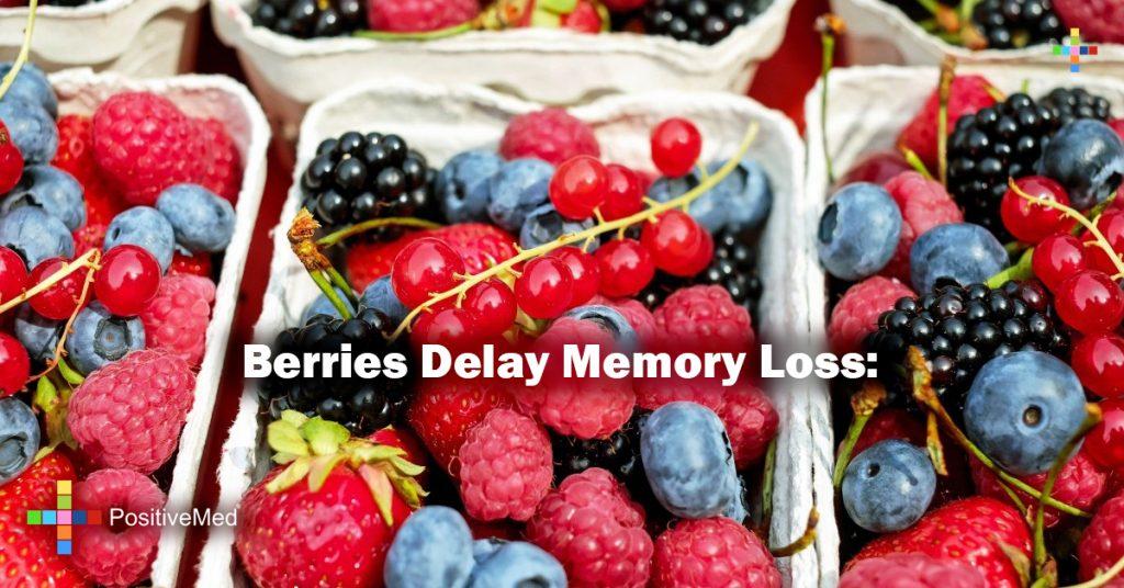 Berries Delay Memory Loss: